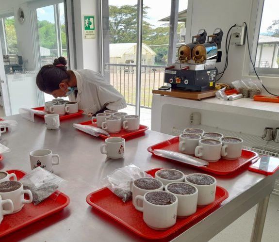 El Quindío contará con dos laboratorios de calidad sensorial de café fortalecidos